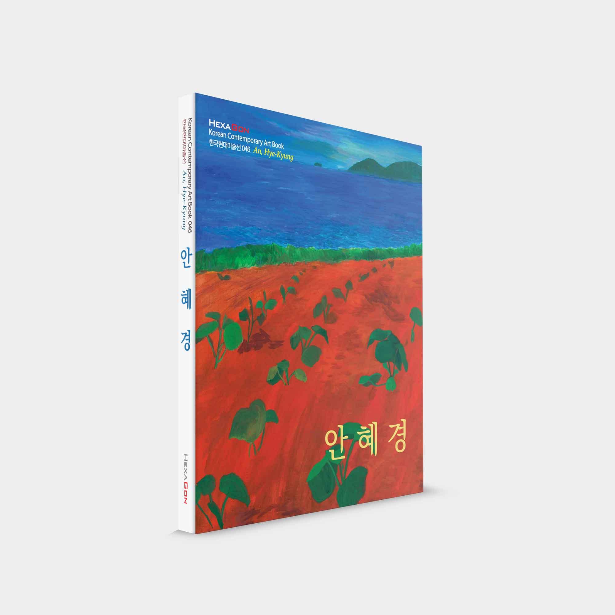 헥사곤 출판사 한국현대미술선 46 안혜경 책 상품 이미지